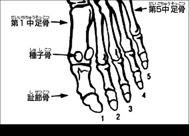 痛い 足 中指 指 の